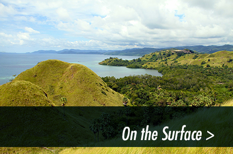Photo gallery Komodo NP on-the-surface