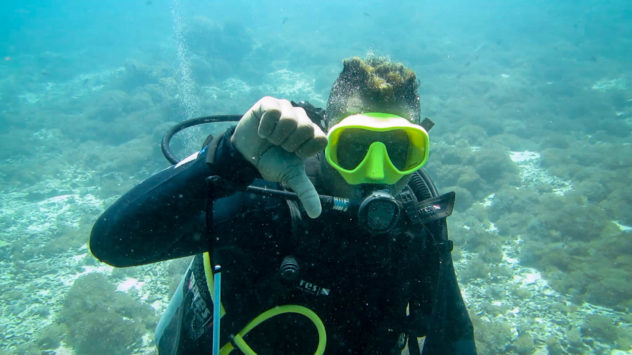 This diving hand signal is used to tell others you are descending or that you want other divers to descend. This is shown with a thumbs down,
