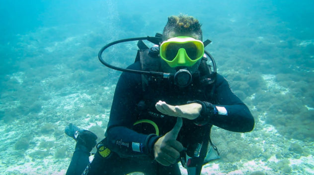 This diving hand signal is used when you want your buddy to come up to your level. This is a common scuba hand signal used in Komodo.
